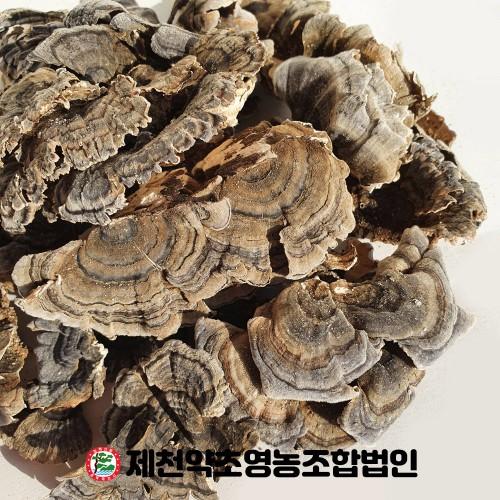 국산 운지버섯  500g