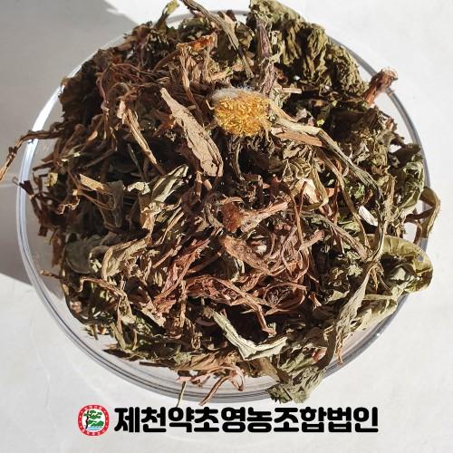 국산 포공영 민들레 500g